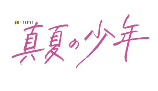 【真夏の少年】あらすじネタバレと視聴率!最終回結末で美少年は!?